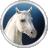 Fog Horses 3D Screensaver