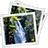 Duplicate Picture Finder