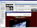 Flash Editor