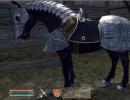 Silver armor