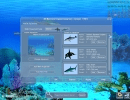 Use the basic settings options to customize your current aquarium