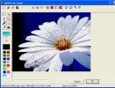 Image Modifier window