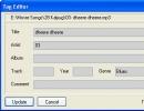 Tag Editor Window