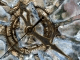 Ice Clock 3D Screensaver