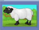 Animal Complete