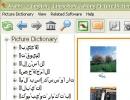Arabic -> English