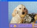 Customize puzzle