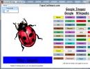 Ladybug and timer options