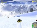 Bunny Hill Race