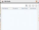 Edit Audio Window