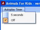 Autoplay Timer