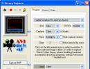 Screen Capture Window