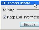 Encoder window
