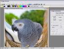Editing an Image