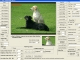 VISCOM Image Viewer CP Pro SDK ActiveX