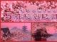 Blooming Sakura 3D Screensaver and Animated Wallpaper
