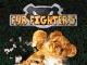 Fur Fighters