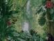 Tropical Cocktail Screensaver