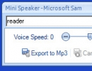 Minispeaker window