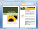 Word Document Sample