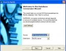 Excel Conversion Window