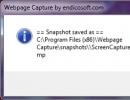 Webpage Capture Report
