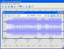 The file in the form of spectrogram