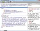 Code Inspect Window