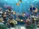 AW-Mill Aquarium Animated Wallpaper