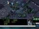 Starcraft Stream Browser