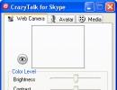 Web Camera Window