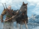 The Witcher 3: Wild Hunt - Skellige Armor Set