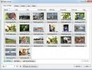 Input file settings