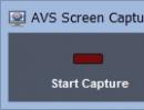 Screen Capture Tool Window