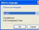 Switch Language Option