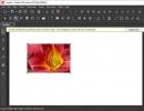 Create New PDF