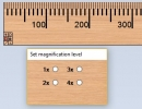 Magnification Level