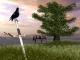 Sword of Honor 3D Screensaver