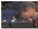 Jayhawk 005