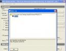 Web Update Client